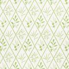 177641 Endimione Leaf Schumacher Fabric