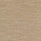 WPW1154 Panama Goldilocks Winfield Thybony Wallpaper