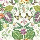ON1600 Tropical Butterflies York Wallpaper
