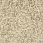 34971-4 Kravet Design Fabric