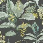 PS41814 MAUI Black Botanical Brewster Wallpaper
