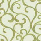 Y6200302 Dazzling Coil York Wallpaper