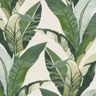 5352 76W8411 JF Fabrics Wallpaper