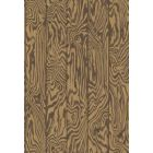 107/1002-CS ZEBRAWOOD Tiger Cole & Son Wallpaper