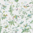 112/4015-CS HUMMINGBIRDS Green Pink Cole & Son Wallpaper