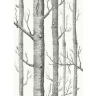 F111/7026-CS WOODS Soot On Snow Cole & Son Fabric