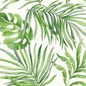 York SO2450 Paradise Palm Wallpaper