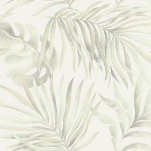 York SO2451 Paradise Palm Wallpaper