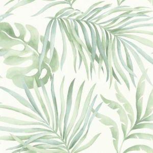 York SO2452 Paradise Palm Wallpaper