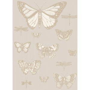 103/15064-CS BUTTERFLIES & DRAGONFLIES Grey Cole & Son Wallpaper