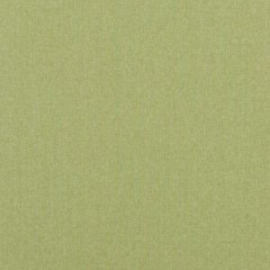 Baker Lifestyle Carnival Plain Grass Fabric