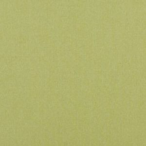 Baker Lifestyle Carnival Plain Lime Fabric