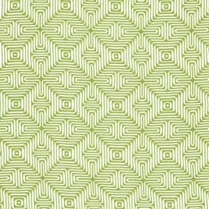 Schumacher Amazing Maze Palm Fabric