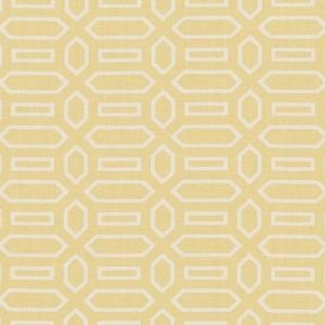 Schumacher Pavillion Straw Fabric