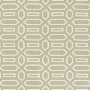 Schumacher Pavillion Sage Fabric