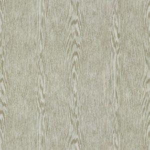 Kravet Palo Fossil Fabric