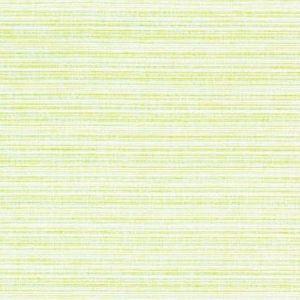 Kravet Nalu Parrot Fabric
