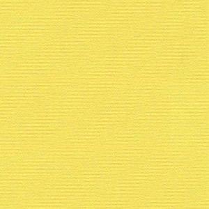 Kravet Rainui Lemon Drop Fabric