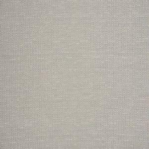 Fabricut Belize Silver Fabric