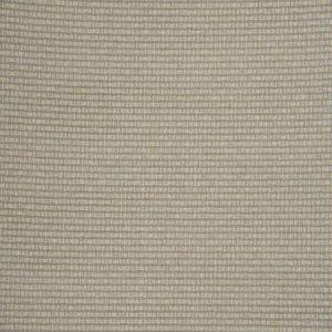Fabricut Rizzio Ash Fabric