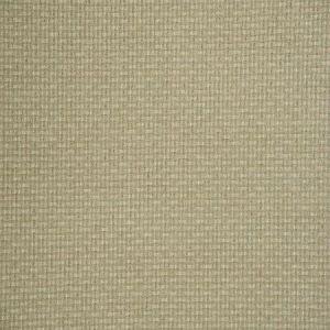 Fabricut Rizzio Celadon Fabric
