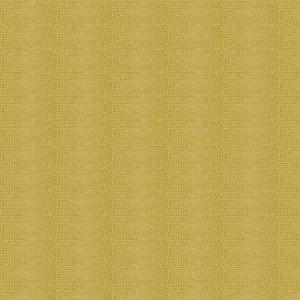 Fabricut Subtle Skin Citron Fabric