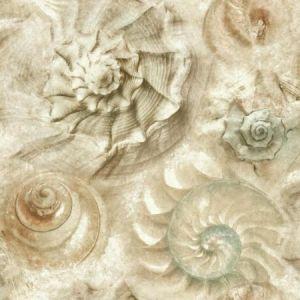 York CM3345 Opulent Shell Wallpaper