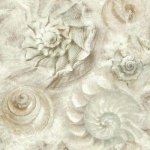 York CM3347 Opulent Shell Wallpaper
