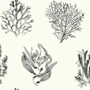 York CM3357 Seaweed Wallpaper