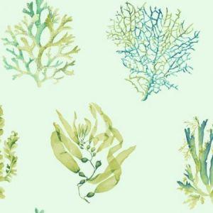 York CM3358 Seaweed Wallpaper