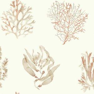 York CM3359 Seaweed Wallpaper