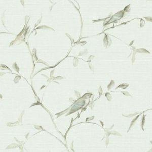 VE7070 Birds Of A Feather York Wallpaper