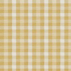 ABANI CHECK Citrus 02 Fabricut Fabric