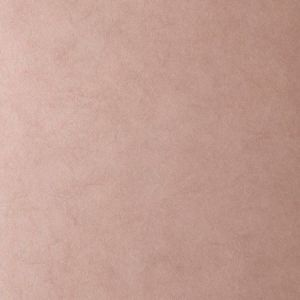 50222W MUSE Blush 37 Fabricut Wallpaper