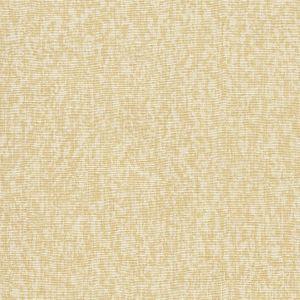5301 12W8251 JF Fabrics Wallpaper