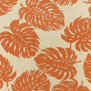 A8035, Tangerine, Greenhouse Fabrics