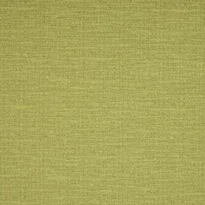 B1111, Greenhouse B1111 Dill Fabric, Greenhouse Fabrics