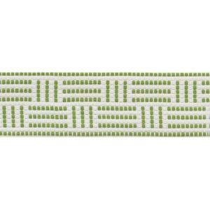 75961 Brickell Tape Leaf Schumacher Trim