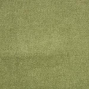 B1272 Fern Greenhouse Fabric