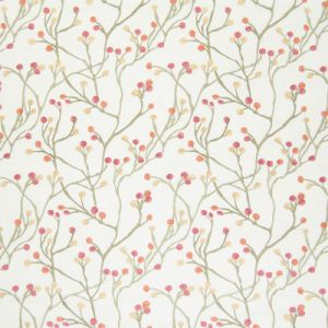 B6533 Garden Greenhouse Fabric