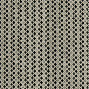 B9728 Onyx Greenhouse Fabric