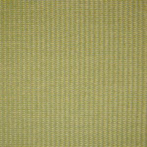 B9871 Spring Greenhouse Fabric