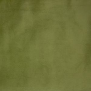 B9882 Limelight Greenhouse Fabric