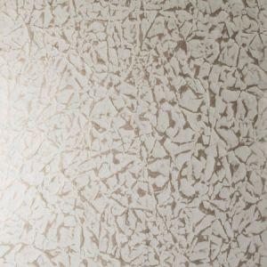 14088W BAIA Warm Silver 06 S. Harris Wallpaper