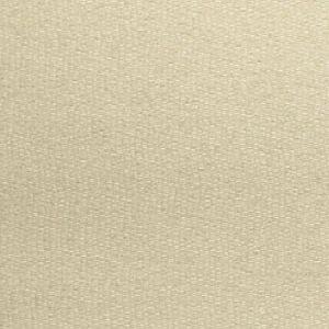 GW 000127224 RAINE WEAVE Dune Scalamandre Fabric