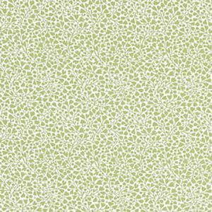 GW 000227228 ELODIE WEAVE Willow Scalamandre Fabric
