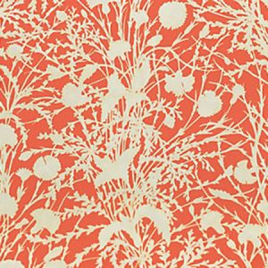 GW 000416623 WILDFLOWER Guava Scalamandre Fabric