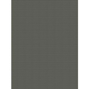 9385905 ASHBURY Charcoal Fabricut Fabric
