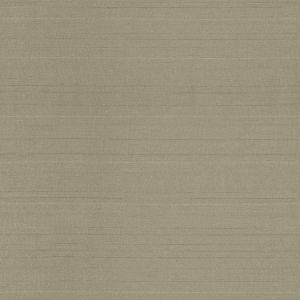 3064168 ELEGANZA Sponge Fabricut Fabric