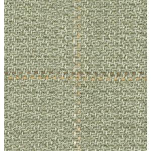 SKEENA Thyme Fabricut Fabric